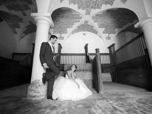 Le mariage de Alexandre et Charlotte à Chilleurs-aux-Bois, Loiret 65
