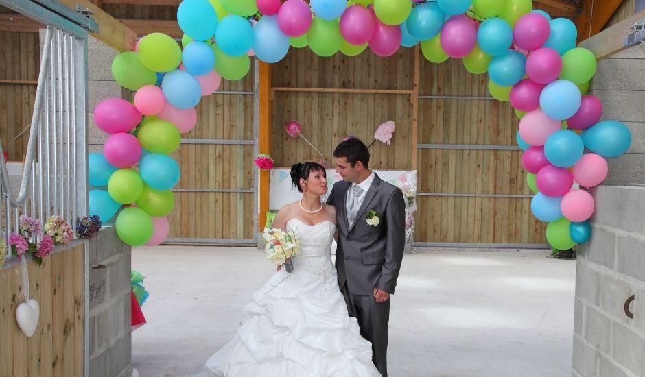 Le mariage de Gwendoline et Arnaud à Bolleville, Manche