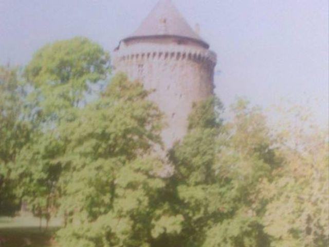 Le mariage de Laura et Sylvain à Bain-de-Bretagne, Ille et Vilaine 14