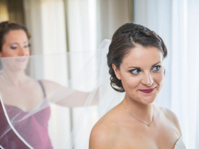 Le mariage de Alban et Stéphanie à Saint-Ismier, Isère 6