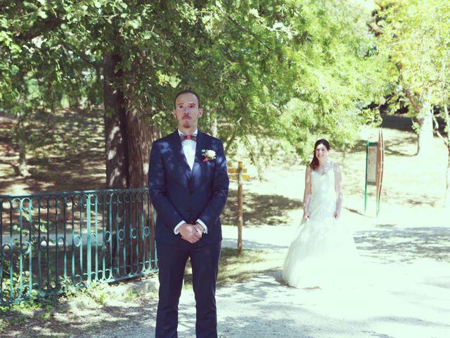 Le mariage de Vincent et Laetitia à La Salvetat-Saint-Gilles, Haute-Garonne 9