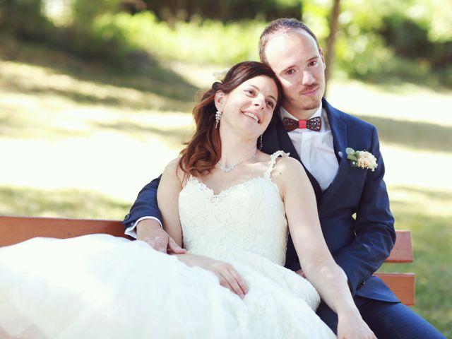 Le mariage de Vincent et Laetitia à La Salvetat-Saint-Gilles, Haute-Garonne 18
