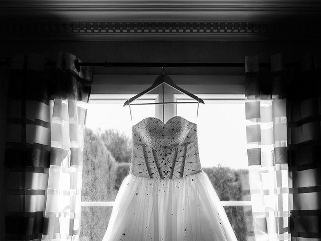 Le mariage de Brice et Priscilia à La Chapelle-Saint-Mesmin, Loiret 3