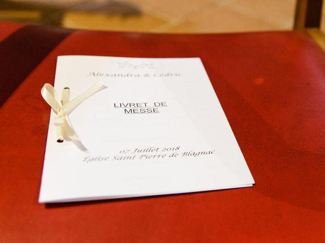 Le mariage de Alexandra et Cédric à Toulouse, Haute-Garonne 18