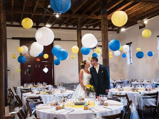 Le mariage de Damien et Lise à Gratentour, Haute-Garonne 26