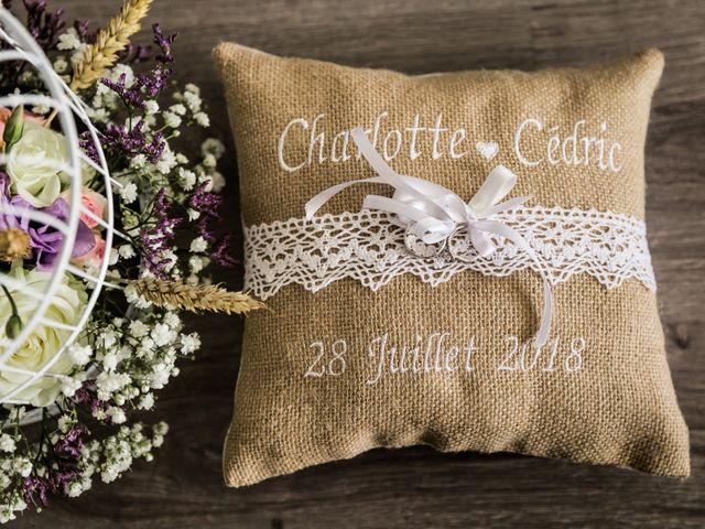 Le mariage de Cédric et Charlotte à Rouen, Seine-Maritime 1