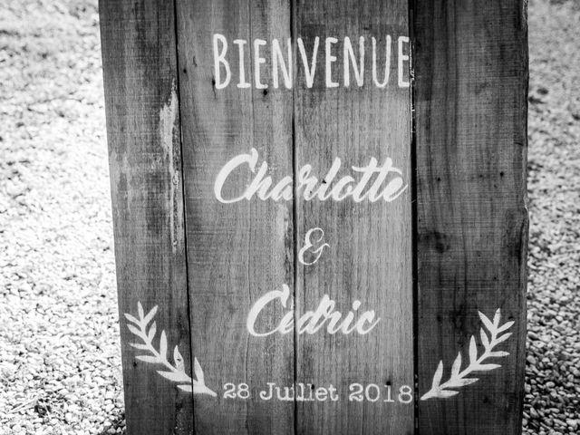 Le mariage de Cédric et Charlotte à Rouen, Seine-Maritime 91