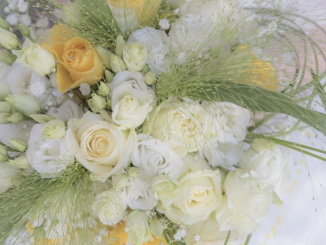 Le mariage de Gregoire et Emilie à Brégnier-Cordon, Ain 4