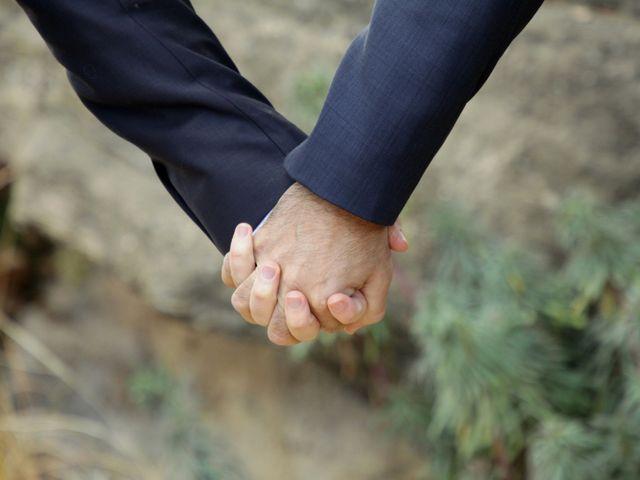 Le mariage de Stéphane et James à Saint-Hilaire-de-Brethmas, Gard 3