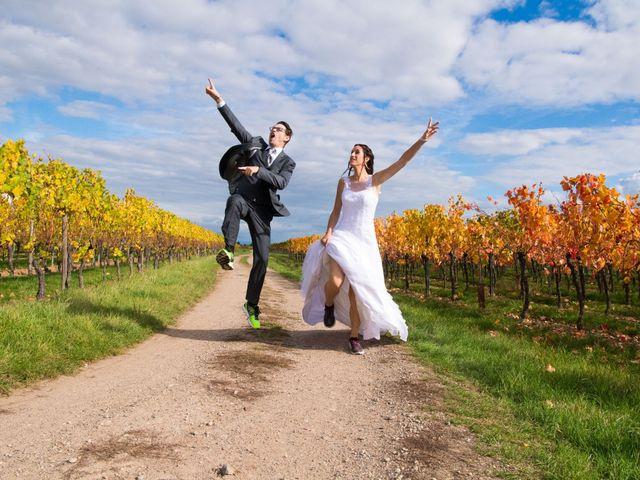 Le mariage de Luc et Lucie à Zellwiller, Bas Rhin 15