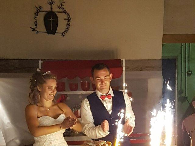 Le mariage de Romain et Elodie à Codognan, Gard 14