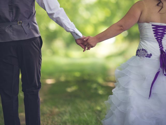 Le mariage de Olivier et Noémie à Nogent-sur-Aube, Aube 8