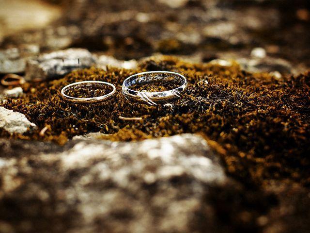 Le mariage de Michael et Sarah à Saint-Étienne-de-Vicq, Allier 46