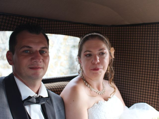 Le mariage de Ludovic et Elodie à Sceaux-sur-Huisne, Sarthe 2