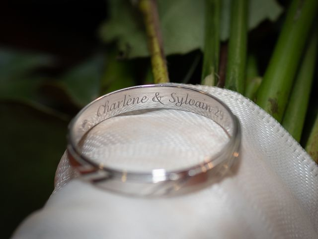 Le mariage de Sylvain et Charlène à Ligny-le-Ribault, Loiret 37
