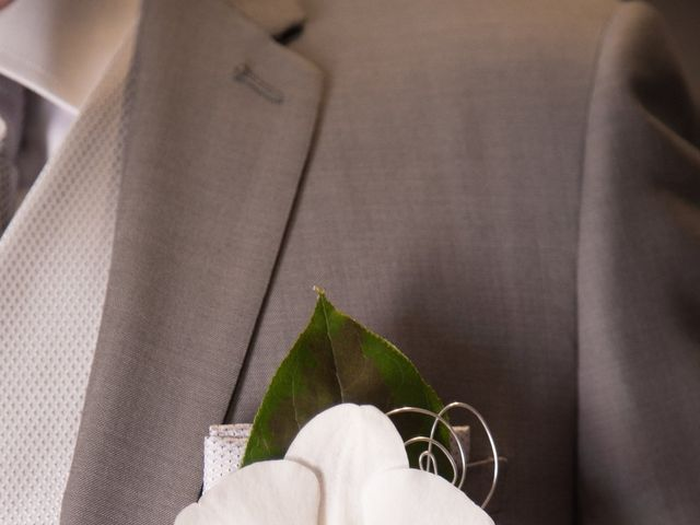 Le mariage de Sylvain et Elodie à Tullins, Isère 17