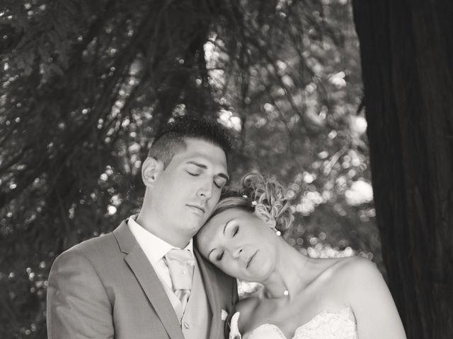 Le mariage de Sylvain et Elodie à Tullins, Isère 40
