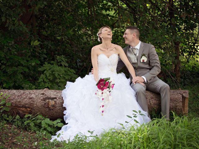 Le mariage de Sylvain et Elodie à Tullins, Isère 59