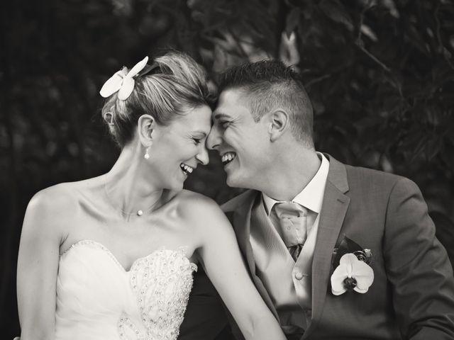 Le mariage de Sylvain et Elodie à Tullins, Isère 60