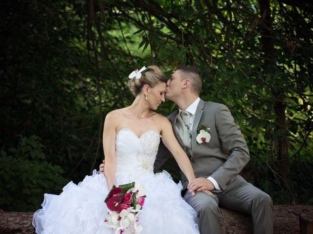 Le mariage de Sylvain et Elodie à Tullins, Isère 61