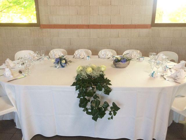 Le mariage de Geoffroy  et Stéphanie  à Lavaur, Tarn 5