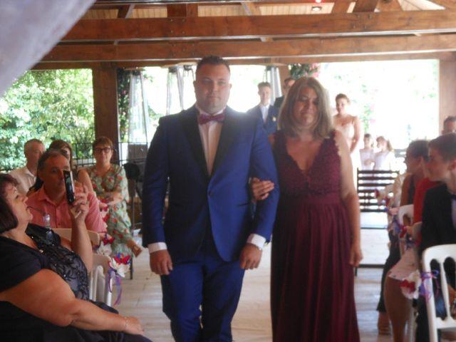 Le mariage de Cédric  et Tiphany à Menucourt, Val-d'Oise 3