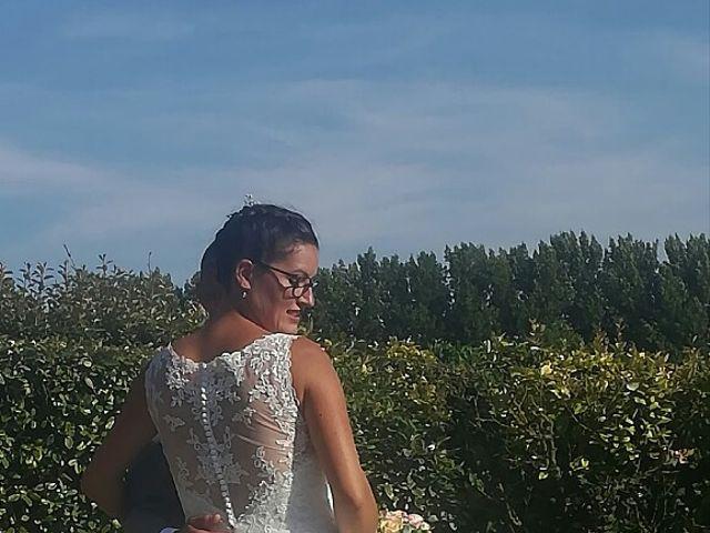 Le mariage de MOUTON et Pauline et vincent à Mont-Dol, Ille et Vilaine 19