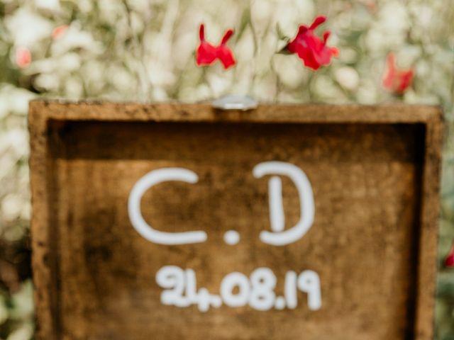 Le mariage de Damien et Camille à Saint-Gilles, Gard 26