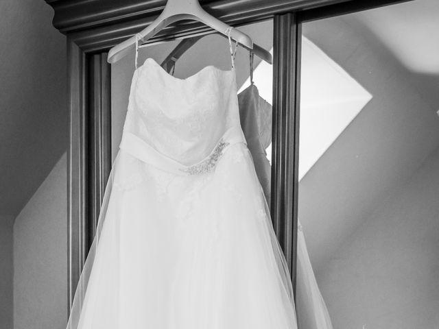 Le mariage de Brice et Emilie à Fay-aux-Loges, Loiret 14