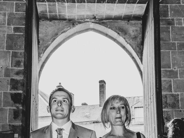 Le mariage de Brice et Emilie à Fay-aux-Loges, Loiret 19