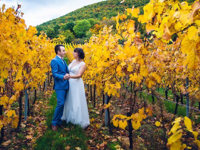 Le mariage de Sébastien et Adeline à Kaysersberg, Haut Rhin 52