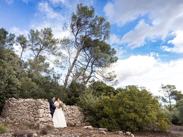 Le mariage de Vincent et Delphine à Saint-Maximin-la-Sainte-Baume, Var 35
