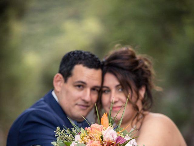 Le mariage de Vincent et Delphine à Saint-Maximin-la-Sainte-Baume, Var 38