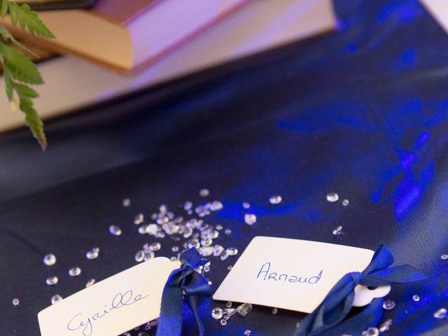 Le mariage de Arnaud et Cyrille à Maison Rouge, Seine-et-Marne 21