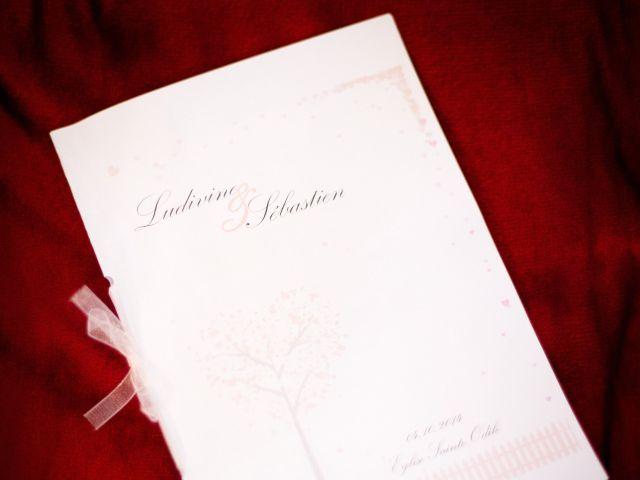 Le mariage de Ludivine et Sébastien à Belfort, Territoire de Belfort 33
