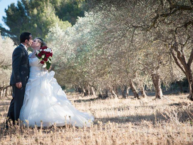 Le mariage de Guillaume et Julie à Grans, Bouches-du-Rhône 8