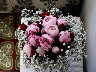 Le mariage de Anne-Louise et Arash 3
