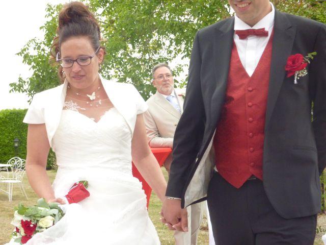 Le mariage de Nicolas et Laurence à La Chapelle-la-Reine, Seine-et-Marne 9