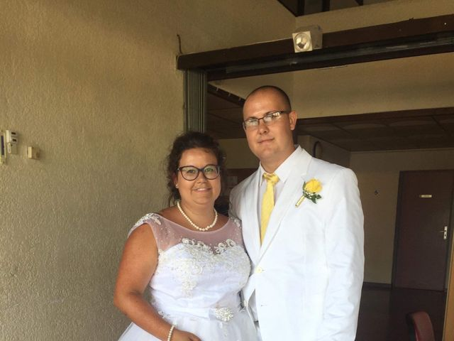 Le mariage de Nicolas  et Lindsay  à Flassans-sur-Issole, Var 1