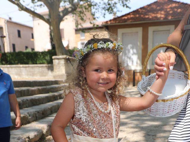 Le mariage de Nicolas  et Lindsay  à Flassans-sur-Issole, Var 9