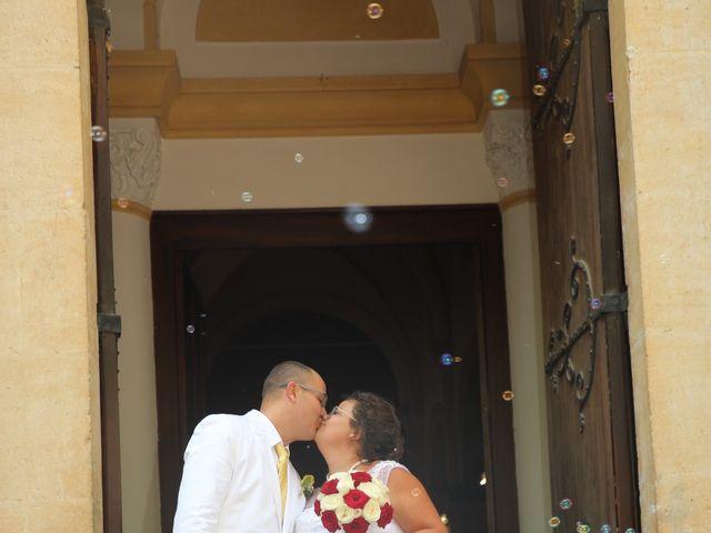 Le mariage de Nicolas  et Lindsay  à Flassans-sur-Issole, Var 11