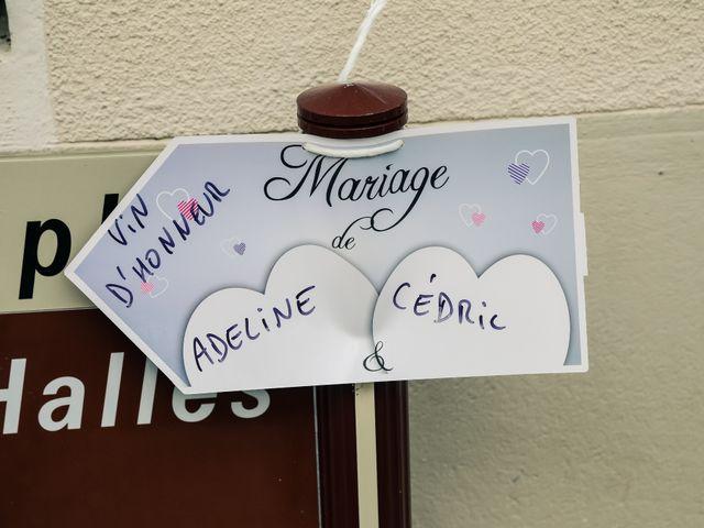 Le mariage de Cédric et Adeline à Saint-Julien-sur-Sarthe, Orne 159