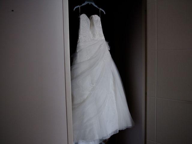 Le mariage de Boris et Emmanuelle à Roissard, Isère 25