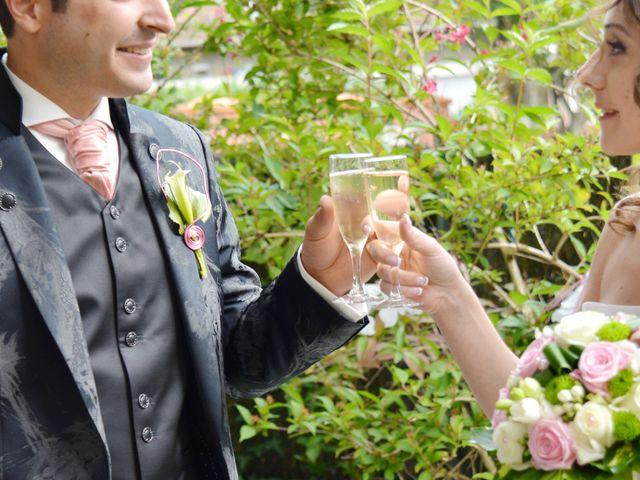 Le mariage de Nicolas et Séverine à Seysses, Haute-Garonne 53
