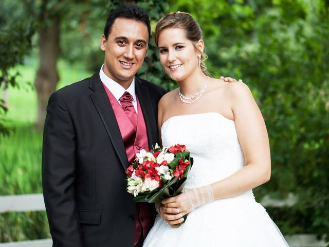 Le mariage de Luis et Allison à Menucourt, Val-d'Oise 19