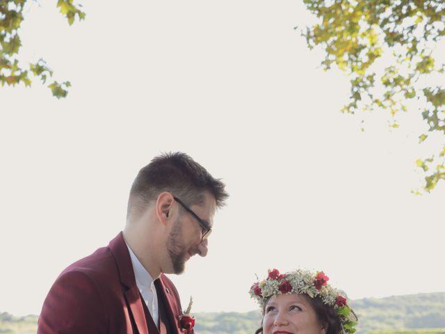 Le mariage de Nicolas et Severine à Nébian, Hérault 43