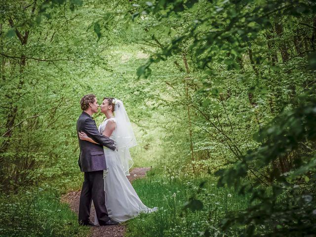 Le mariage de Cyrille et Anne-Laure à Ardon, Loiret 18