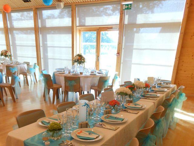 Le mariage de William et Aurore à Brenthonne, Haute-Savoie 25
