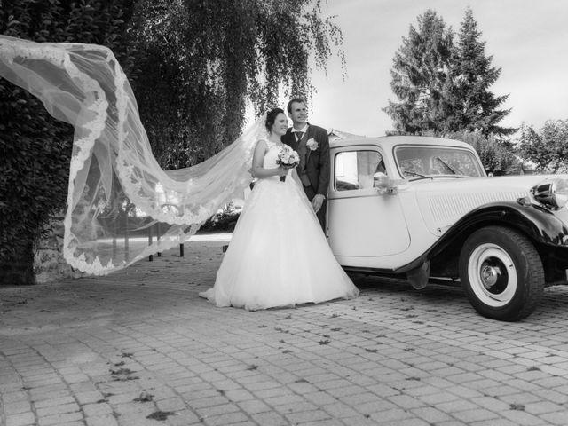 Le mariage de Aurélien et Aurélia à Paray-Vieille-Poste, Essonne 45