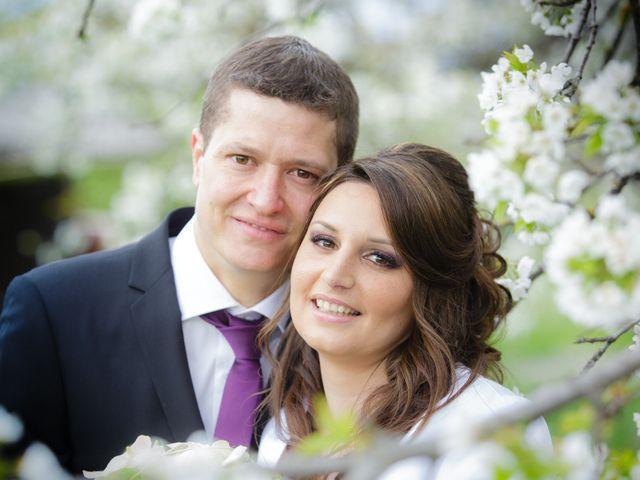 Le mariage de Julien et Vanessa à Feigères, Haute-Savoie 14